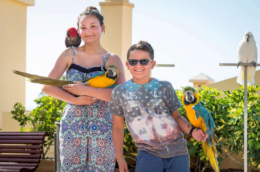 Younger guests having fun with parrots at Paradise
