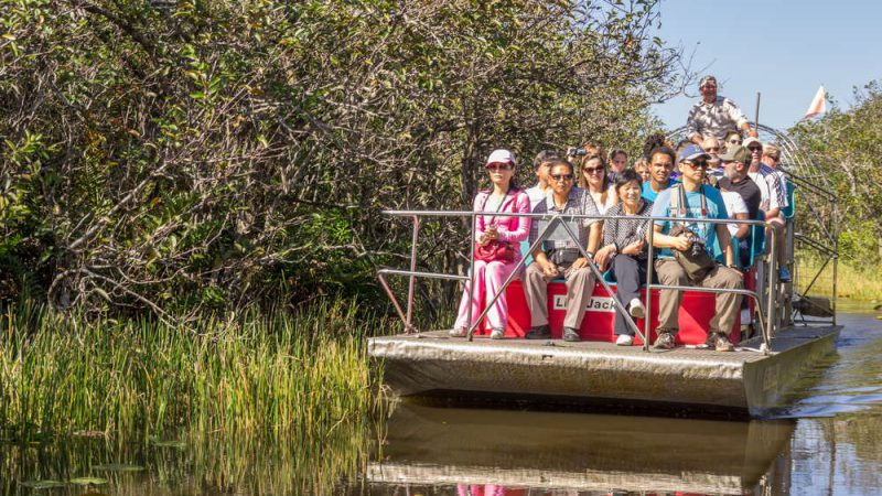 Guests having a fun trip to the Everglades